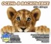 20.11 - Еще есть Львята! Едем в Зоопарк Пылышенко!
