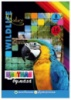 Бумага цветная мелованная двусторонняя А4, 16листов