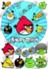 Angry birds 01