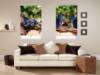 Рулонные шторы с фото в гостинную