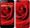 Чехол на Huawei Honor 4X Красная роза 529u-166