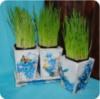 Комплект кашпо для интерьера «Голубые цветы»