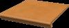 Клинкерная ступень с капиносом прямая Aquarius Beige 30х33