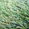 Искусственная трава Sit-in Radici PAT 40мм