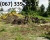 Уборка территорий Киев, валка деревьев Киев, вывоз веток. 0673393531. удаление деревьев Киев.