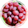 Столовый виноград «Ливия»