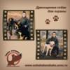 Дрессировка,натаска охотничьих собак