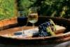 ИН-АГРО: Виноделие