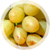 Столовый виноград «Аркадия»