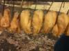 копченое куриное филе