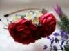 вишневые розы с жасмином