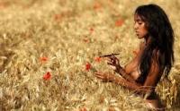 Семена озимой пшеницы Чернява