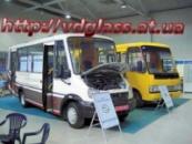 лобовое стекло для автобусов ГаЛАЗ Виктория I в Никополе