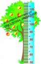 Ростомер «Дерево»