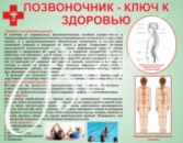 Стенд «Позвоночник - ключ к здоровью»