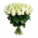 51 біла троянда (70 см)
