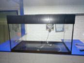 аквариум 170л с крышкой