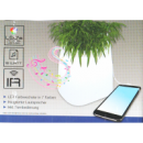 Лампа - Светодиодный горшок для цветов, Ночник, Проигрователь MP3 (Новый сток)