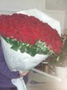 101 висока троянда