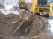 Выкорчевка пней Донецк и область