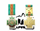 Медаль «За співпрацю» ДПС