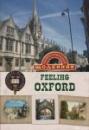 Дневник «Найрозумніший» 2013 тв. обл. ЛАК «Оксфорд»
