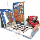 The Balm палетка 18 теней + трафареты BALMSAI