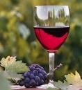 Вино и коньяк домашнее закарпатское без ГМО