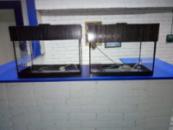 аквариум 20л с крышкой