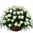 Корзина «75 белых роз»