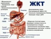 Препараты для ЖКТ