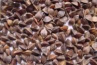Гречиха органічна (гречиха органическая)