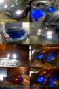 30.01.2011 г. Toyota Camry установка подсветки