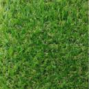 трава ландшафтна