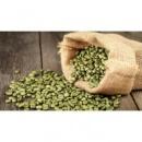 Зелёное Зерно