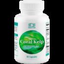 Корал Келп - Coral Kelp