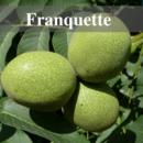 Franquette (Франкетте)