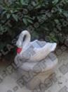 Лебедь (цветник) маленький