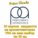 Тест пак 10 жидкостей по 10 мл на ароматизаторах TPA