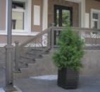 Кованые ограждения входа. Киев, ул. Брюллова
