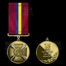 Медаль «25 років Збройним Силам України»