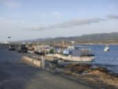 Организация туров по о.Кипр, порт Агио Георгий