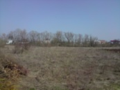 Земельна ділянка в с Шипинці