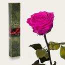 Три долгосвежих розы Малиновый Родолит в подарочной упаковке (не вянут от 6 месяцев до 5 лет)