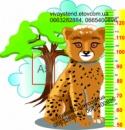 Ростомер «Детеныш леопарда»