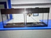 аквариум 15л с крышкой