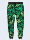 Брюки Cannabis