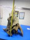 корряга для аквариума №3