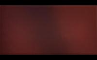 Плитка из клинкера 30х15 см. «CERRAD» коллекция «Кантри Вишня»