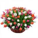 Корзина поздравительная «Дыхание весны»